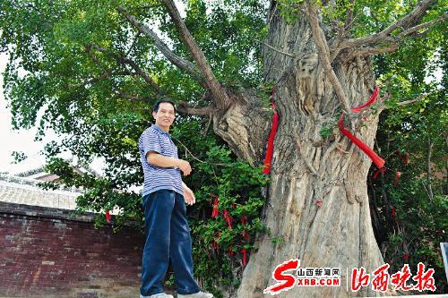 山西省内现存银杏树中最大的一株银杏王