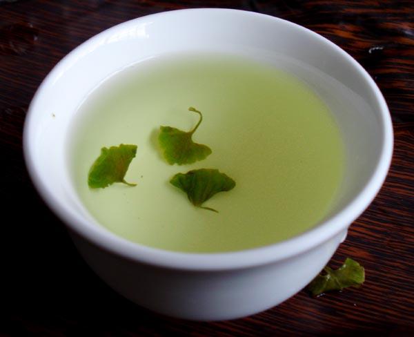 银杏叶嫩芽茶清绿油润