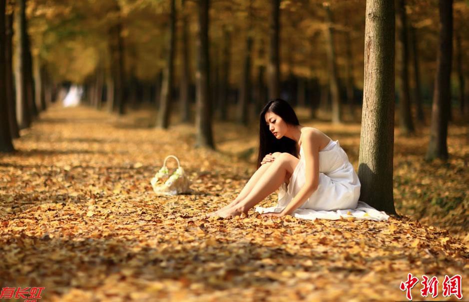 美女坐在铺满金黄银杏叶的地上休息