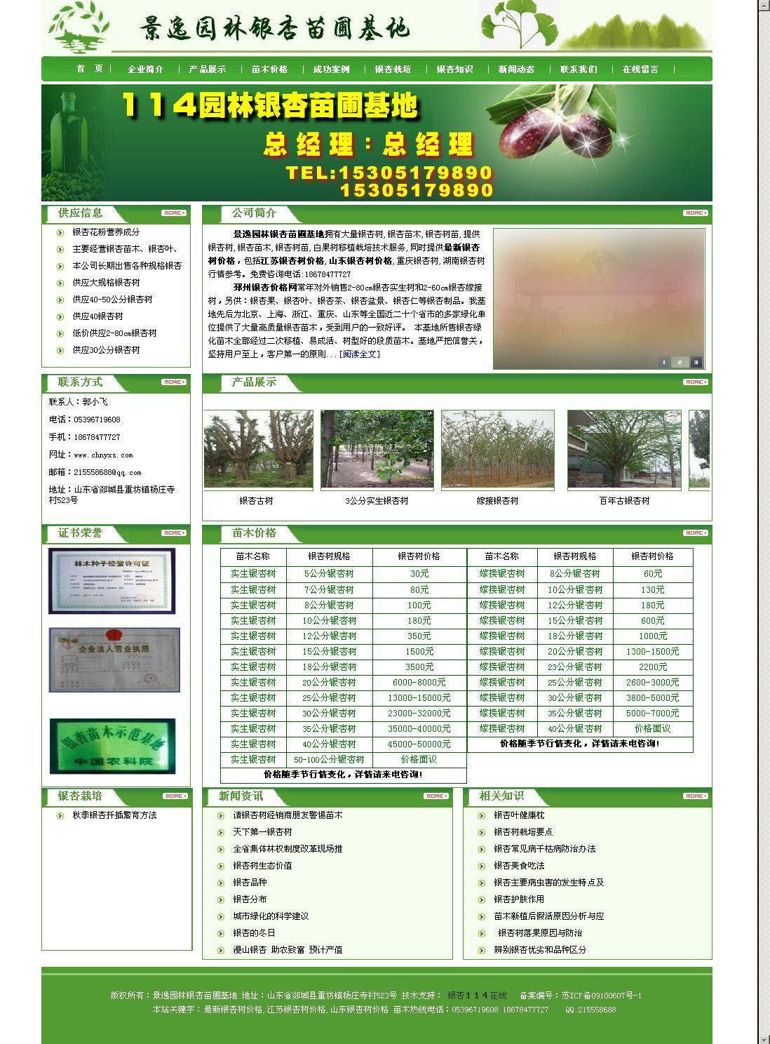 银杏树网站截图