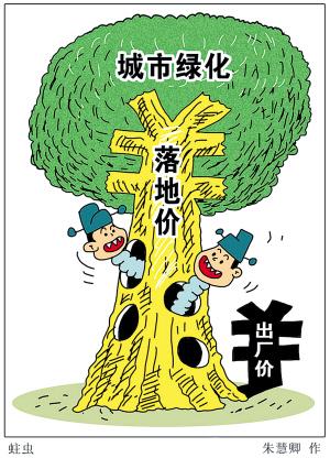 关于超级银杏的漫画