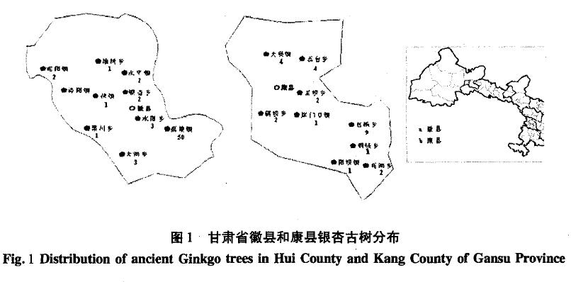 甘肃省徽县和康县银杏古树分布图